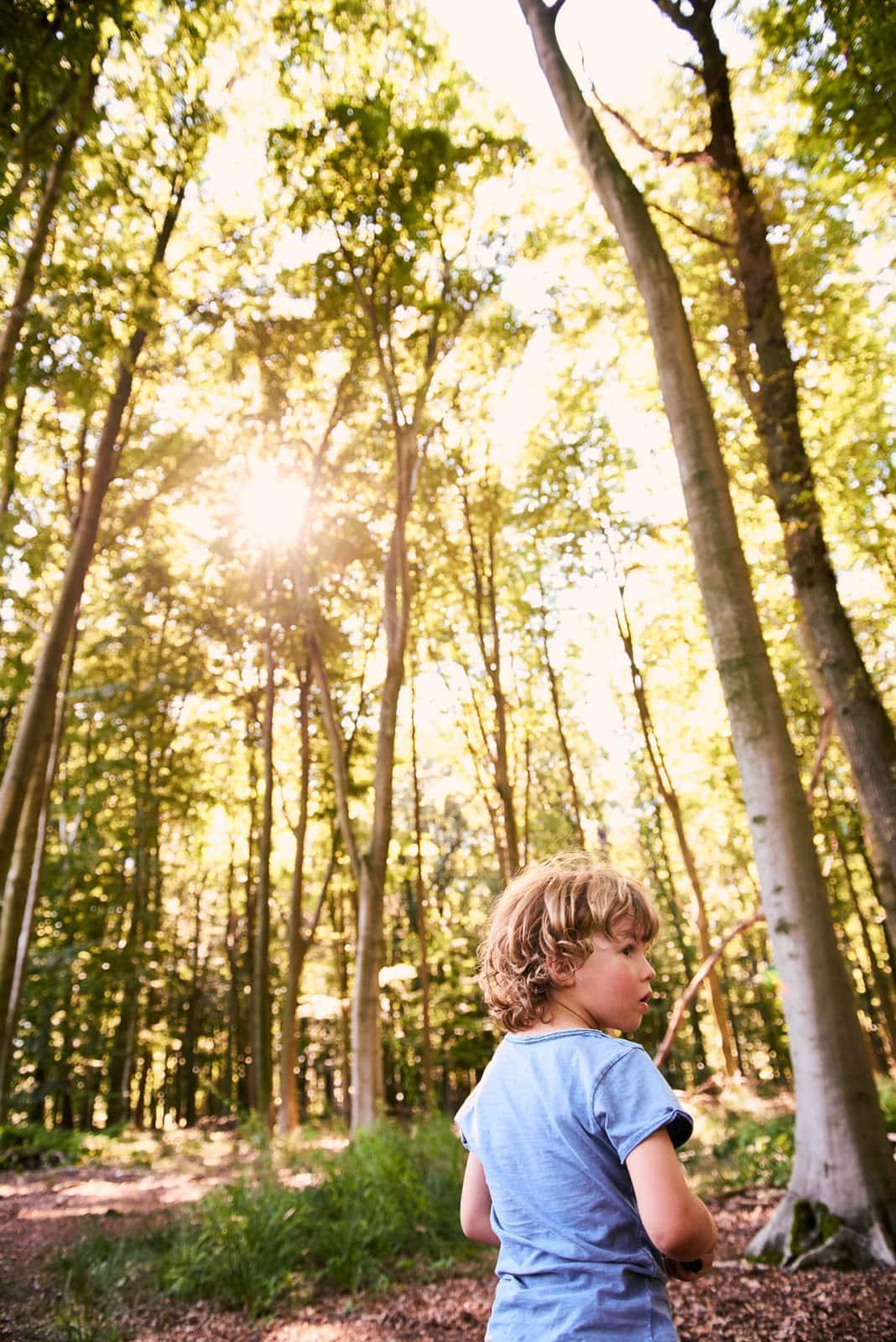 Kind spielt im Wald für Shooting